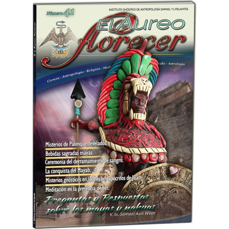 Revista 41 - (formato en papel)