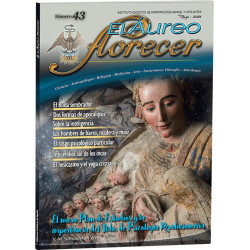 Revista 43 - (formato en papel)